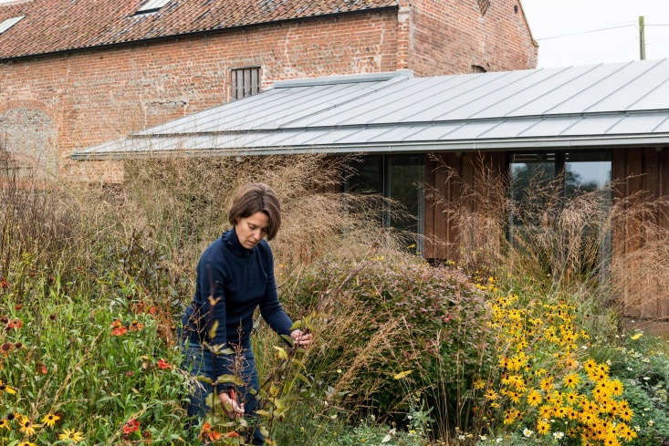 &#8\2\20;The south east courtyard is exuberantly planted and was designed with rich autumnal colors in mind,&#8\2\2\1; says Erlam.
