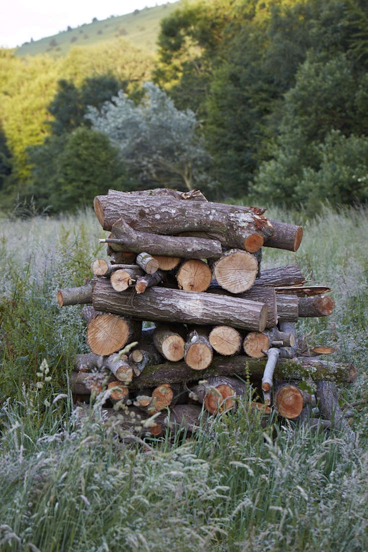Photograph by Britt Willoughby-Dyer. See more in The Well-Kept Woodpile:  Tips to Stack and Care for Firewood.