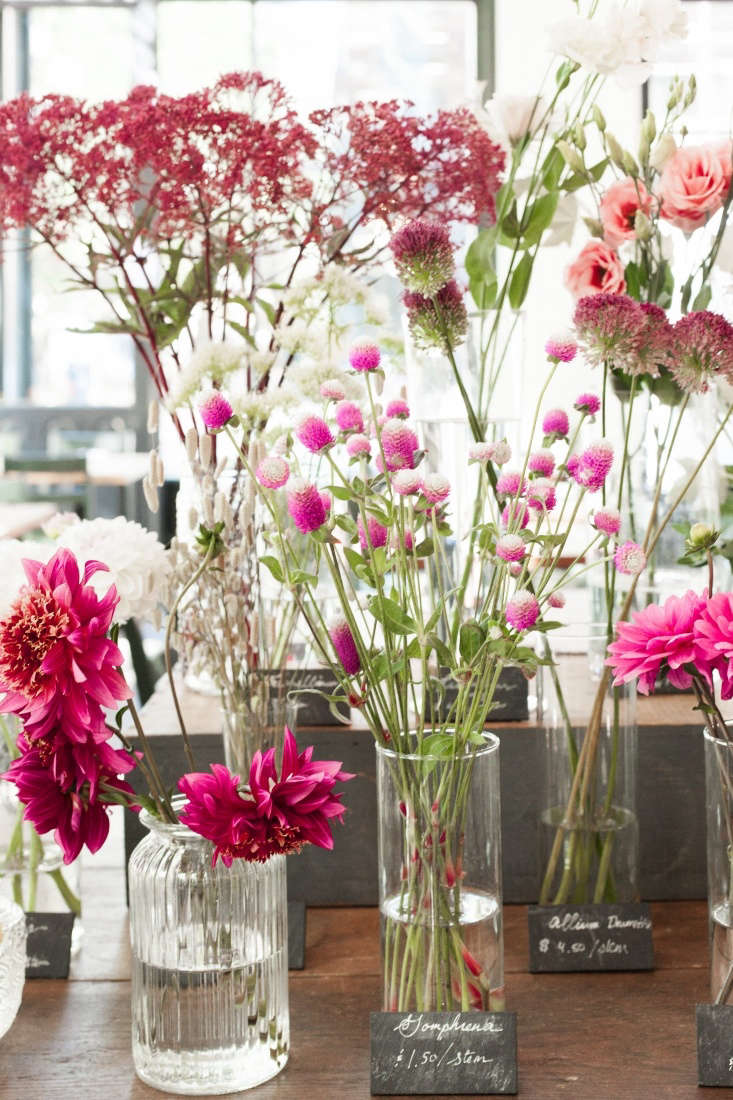Shades of pink on offer: globe amaranth, dahlias, and alliums.