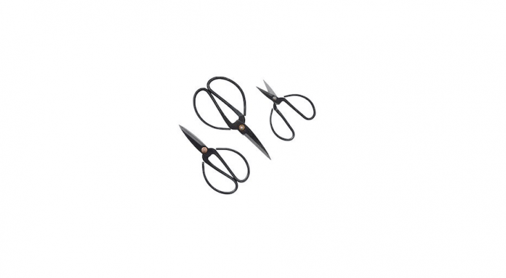 Above: A set of threeHerb Scissors is \$\29 NZ (about \$\20 US) from Father Rabbit.