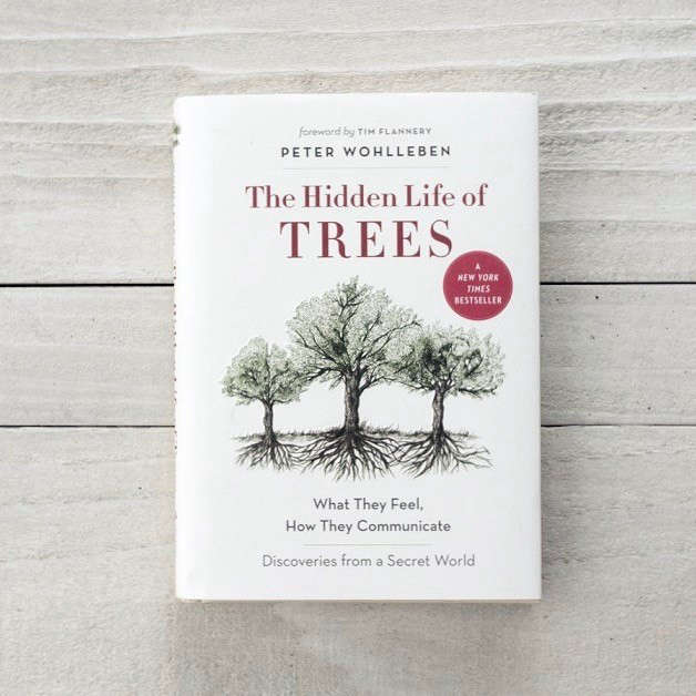 A hardcover copy of The Hidden Life of Trees is $.95 at Guideboat.