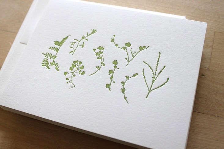letterpress card pressed plants moontree