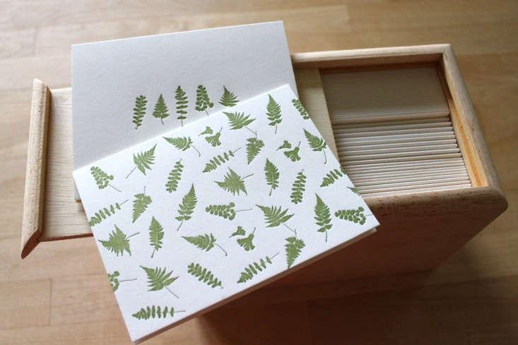 letterpress fern cards box moontree