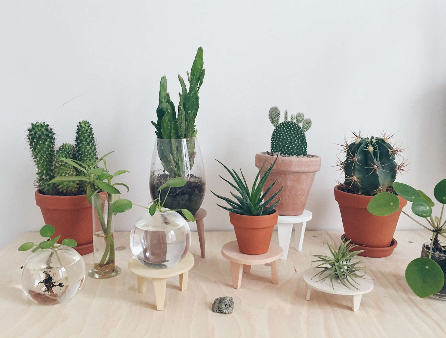 To vary the heights of her potted plants, Maria fashioned &#8