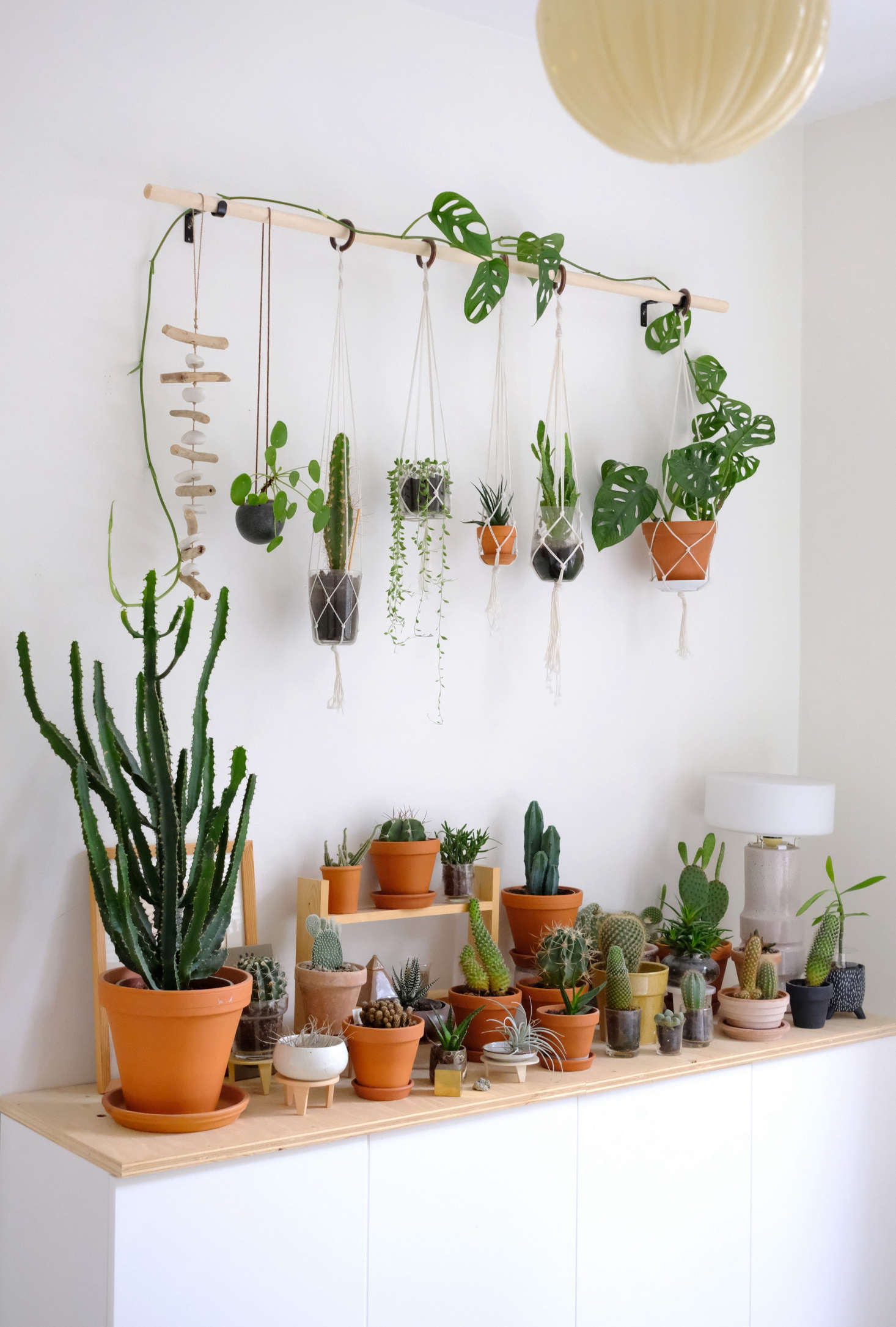 Diy Hanging Plant Wall With Macrame Planters