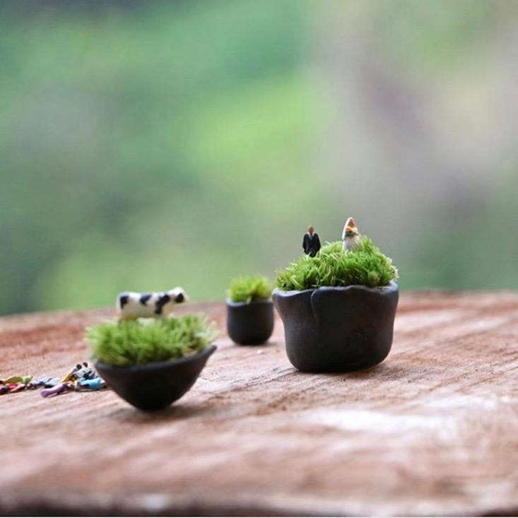 A collection of open-air narrative terrariums by Mossimoto.