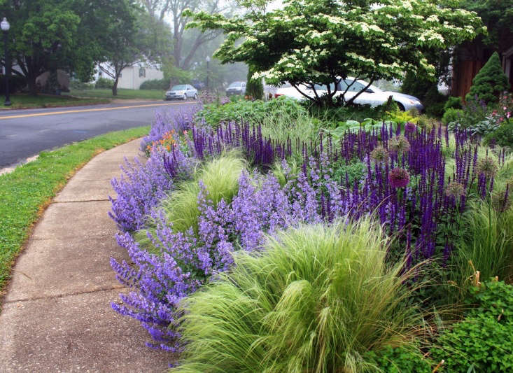 Ornamental grasses and perennials at the edge of a front garden can be enjoyed by passersby. Photograph by Thomas Rainer. See more inUnconventional Wisdom: 8 Revolutionary Ideas for Your Garden from Thomas Rainer.