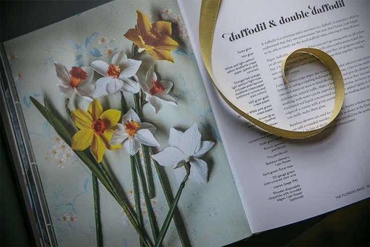 From leggy daffodils to feathery cosmos, leaves (as well as stems and buds) get their own chapter.