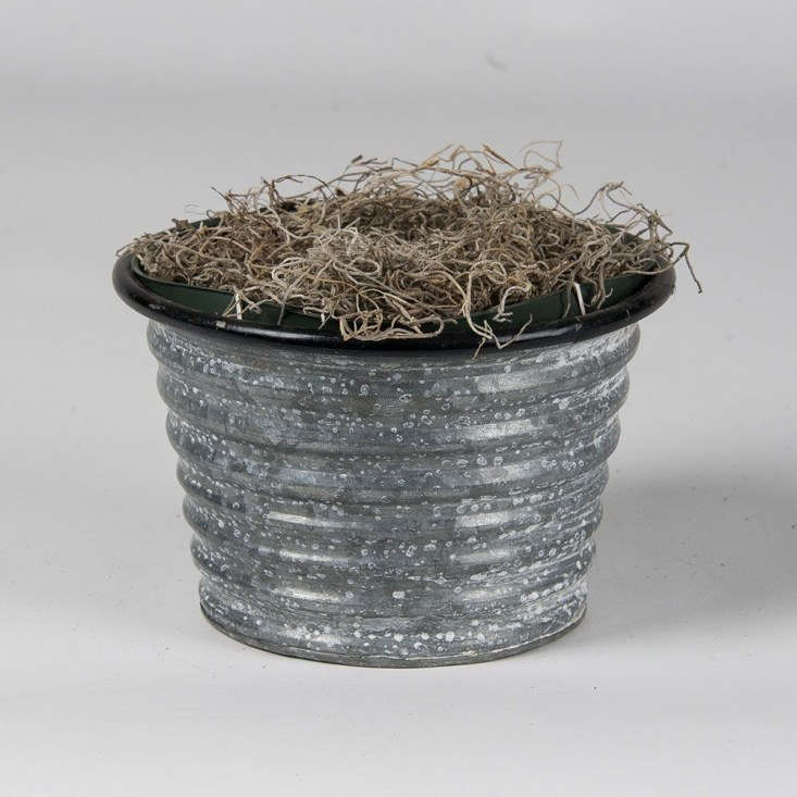 A large metal cachepot planted with 36 bulbs, aSpring Sonata Bulb Collection is \$79 from White Flower Farm. Pre-order now for December shipping.