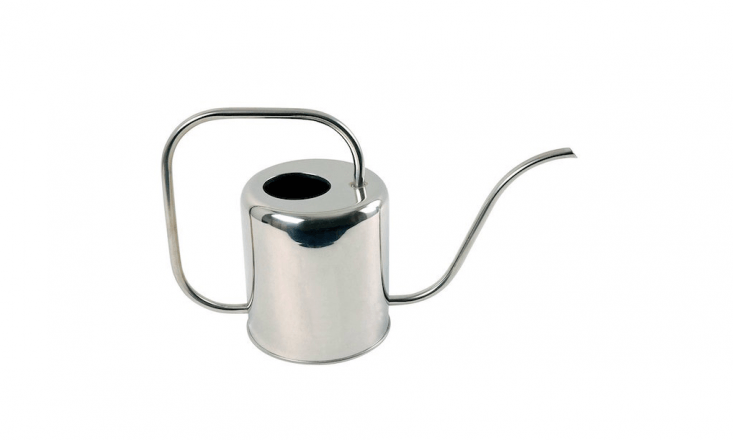 A Stainless Steel Watering Can by Esschert Design is \$\29.99 on Amazon.
