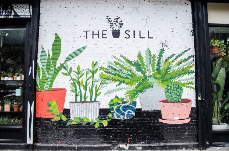 The Sill&#8