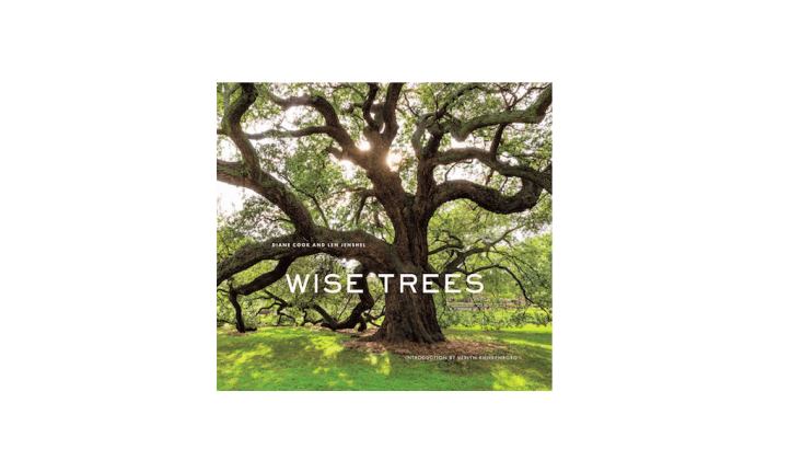 A hardcover copy of Wise Trees is $.37 from Amazon.