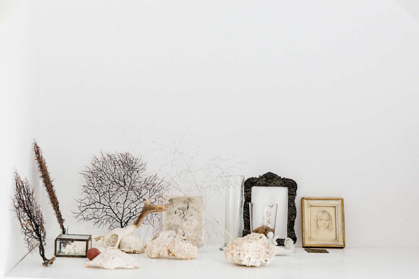 Still life with shells; vignette by Yasuyo Harvey. See more at The Botanical Life: At Home with London Stylist Yasuyo Harvey. Photograph courtesy of The Modern House.