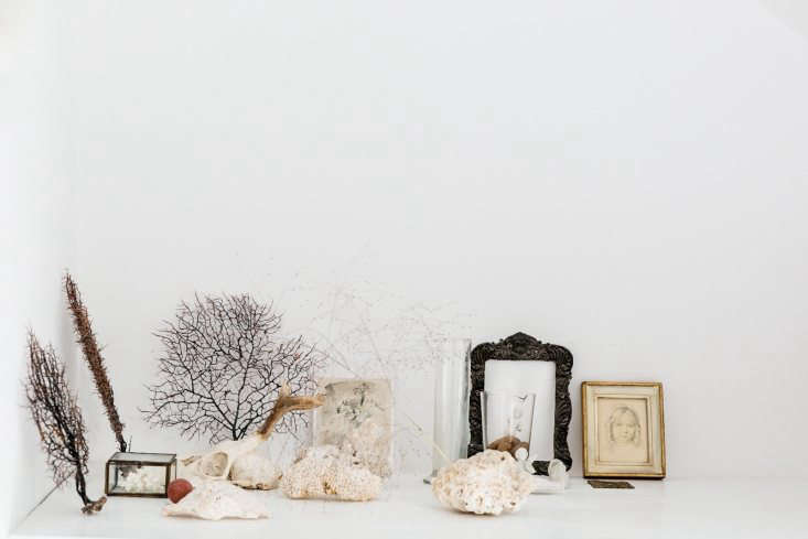 Still life with shells; vignette by Yasuyo Harvey. See more atThe Botanical Life: At Home with London Stylist Yasuyo Harvey. Photograph courtesy of The Modern House.