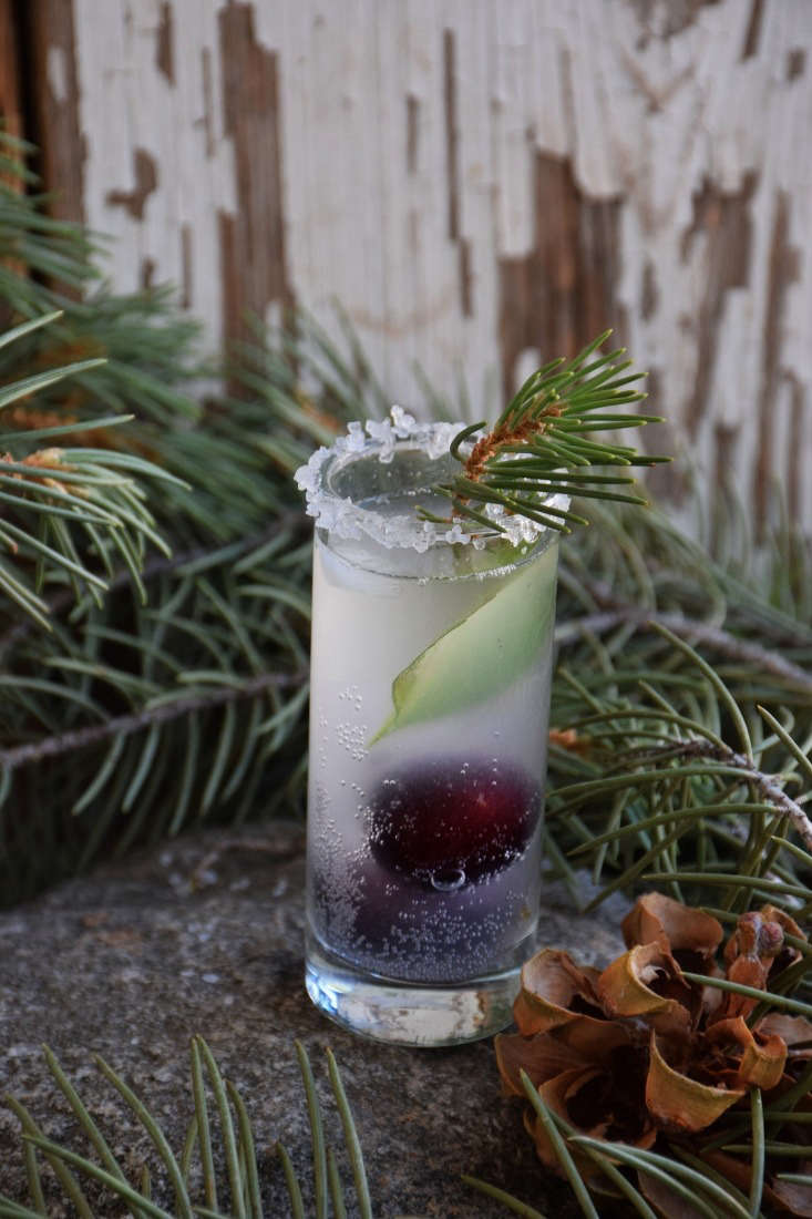 In a riff on the pine theme, unripe pinecone soda opens up a new world of possibilities. Because baby pine cones belong to spring, and spring is coming sooner than we believe, here is the recipe, excerpted and reprinted with permission from the publisher, Chelsea Green Publishing.