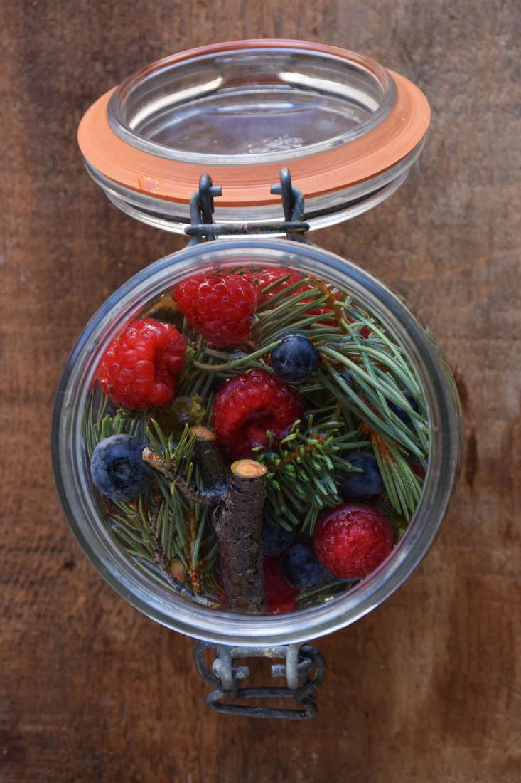 One of the best ways to begin brewing (I think) is by dipping your toes in the bubbling waters of homemade soda. Mountain raspberry and blueberry soda is a recipe easily adapted to different regions of the country, featuring your local pine, fir, or spruce needles along with farmers&#8