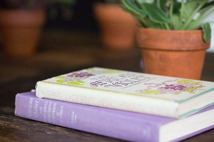 My Etsy purchase included a copy ofThe African Violet (a similar hardcover copy is available for \$8.\26 from eBay) and a second book of tips from \20 African violet experts edited by Mrs. Van Pelt Wilson.