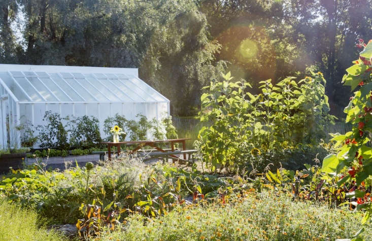 At Rosendals Tradgard, biodynamic principles are practices in both the garden and greenhouse. Photograph via Rosendals Tradgard.