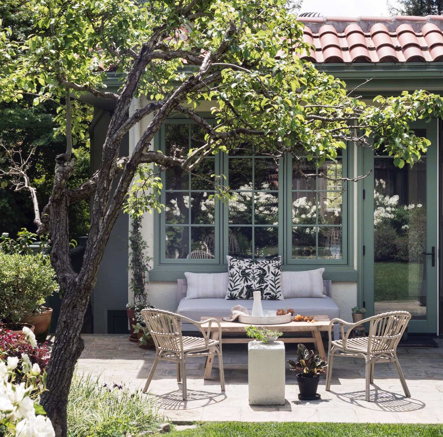 A low sofa sits beneath the height of the window panes on my Mill Valley, California house. From indoors, I have an unobstructed view of the back garden.