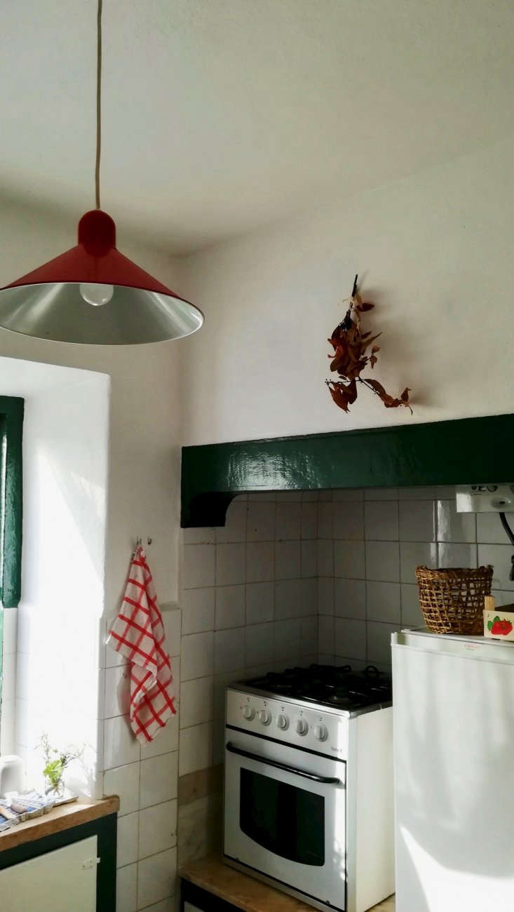 A branch of dry bay leaves hangs in my kitchen.