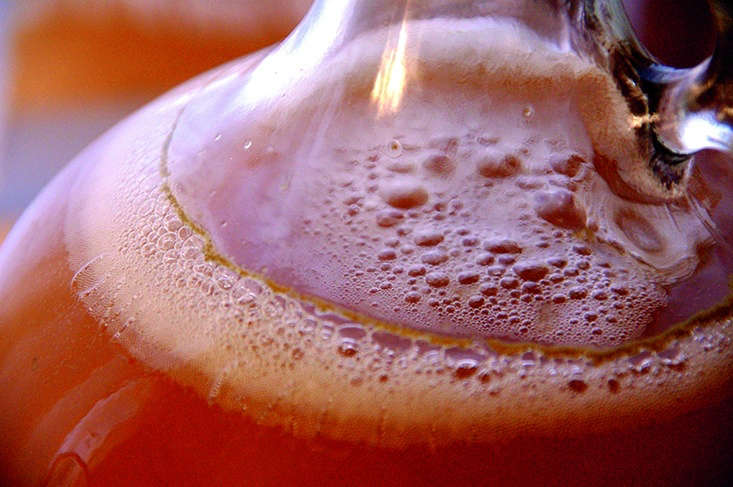 Hot and cold brewing are explained, brewing with and without yeast starters (there is a master recipe and suggestions for wild starters made with elderflowers, elderberries, pinyon pine cones, and cactus pears), beers, and flower and fruit wines.