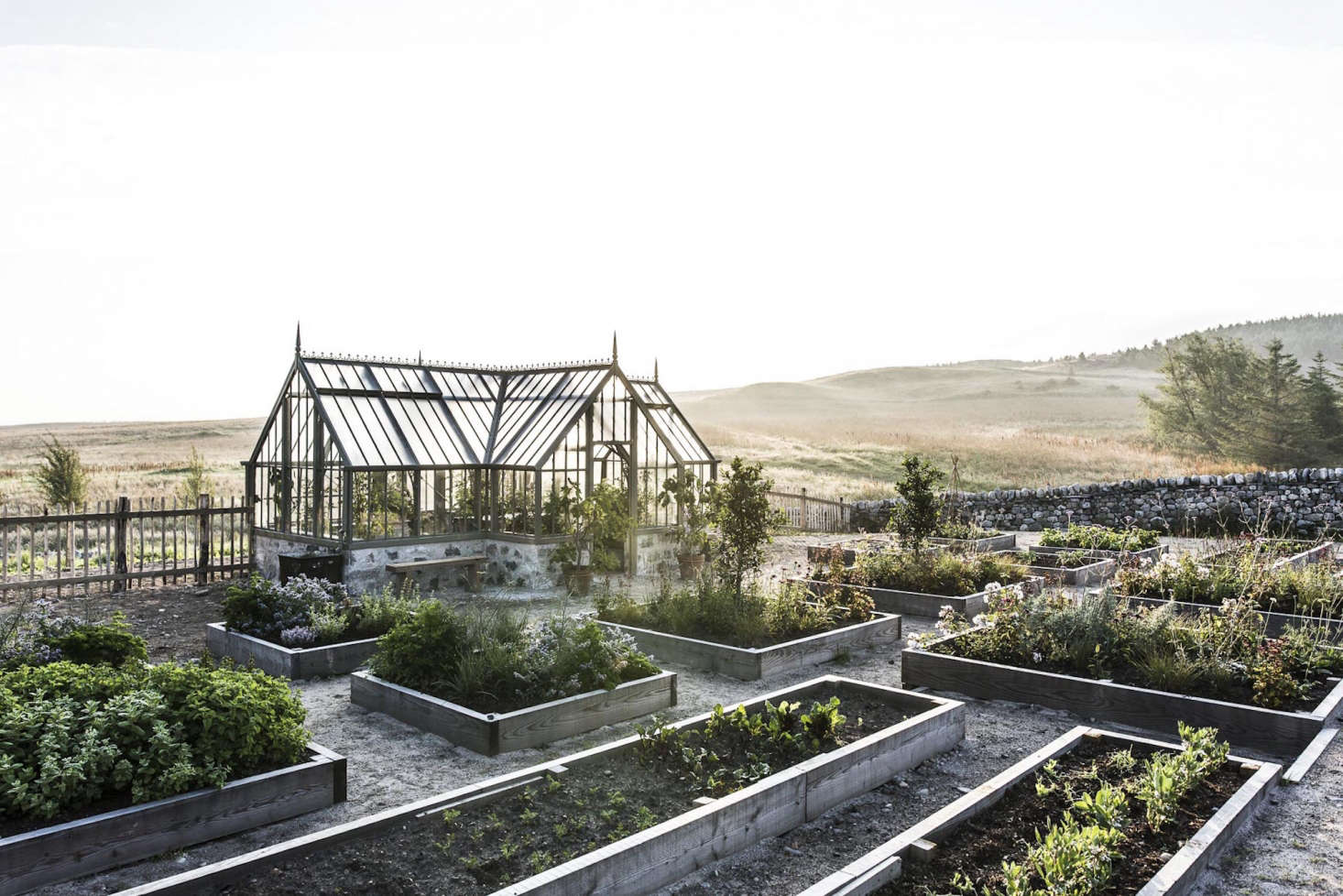 Killiehuntly has a large organic garden, bordered by a fence and low stone walls, with rows of raised beds for fruits and vegetables. The produce supplies daily meals in summer and fall, and the kitchen draws fromits larder in the winter and early spring.