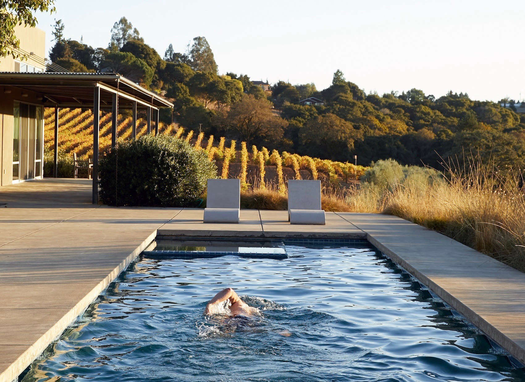 Swimming Pool Of The Week A Lap Pool Above The Vines At Baker Lane Gardenista