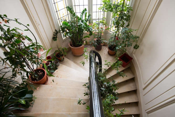 Place pots ascending a staircase and take advantage of the roominess of a landing and the natural curves.