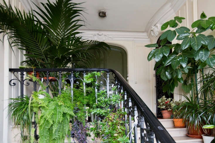 Create a living wall using the balusters as a framework.