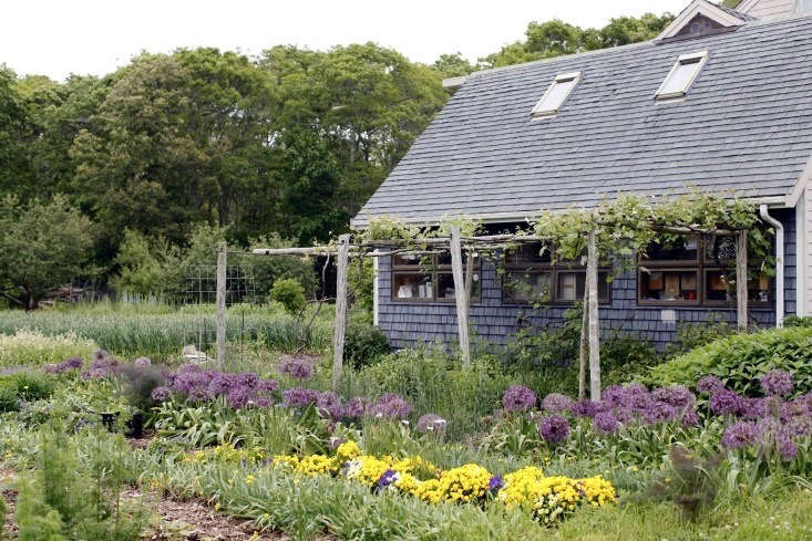 Photograph by Christine Chitnis for Gardenista. For more, see Boston&#8