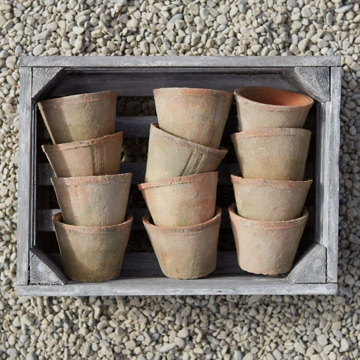 A box of six Earth Fired Clay Pots is $ from Terrain.