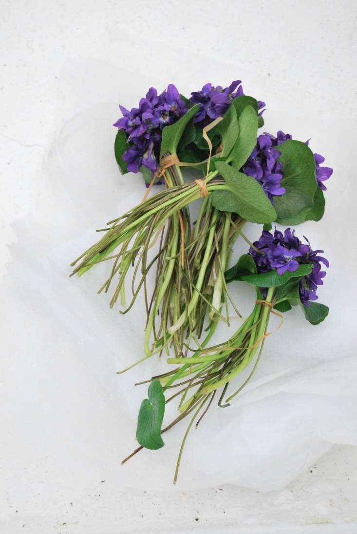 Violets have always been sold in tight little bundles with leaves around the edges.