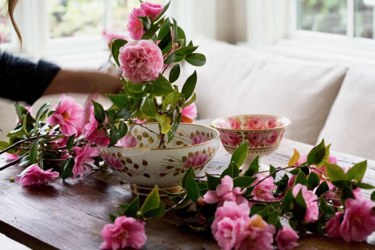 I cut branches from a couple of different camellia bushes—some of my camellias are very ruffly and others have flattish flowers.