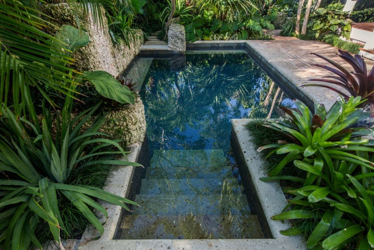 An oolite wall and steps at the the back of the pool echo a theme.