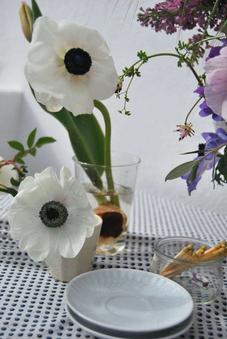Stems of anemone paired with tulip and rambling roses.