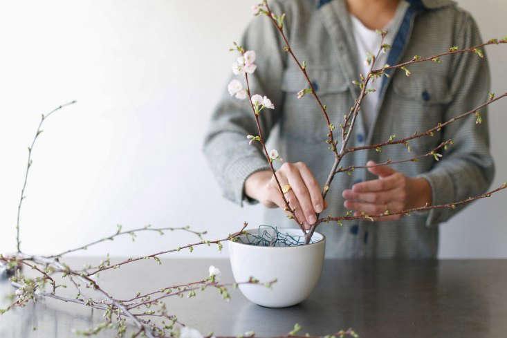 Sammy arranges sweet almond branches in the vase.