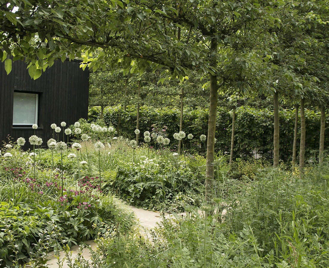 Planting alliums (which squirrels dislike) among other plants (making the bulbs harder to detect) is a good way to keep your bulbs safe. Photograph by Rosangela Photography, courtesy of Stefano Marinaz Landscape Architecture, from Gatehouse Garden: A Dramatic Black Backdrop for a White Wildflower Meadow.