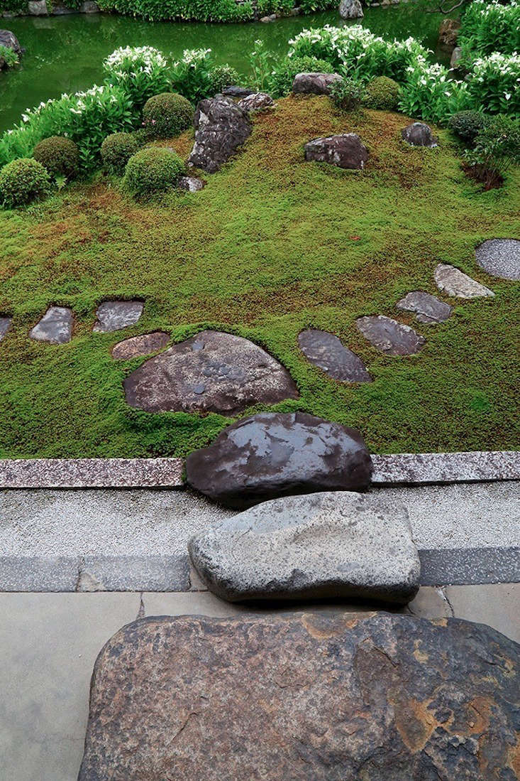 You don't want uniformity in stepping-stones; quite the opposite. The best stones for this purpose are rounded but have one side slightly flat, to be walked on. They're easily found in Japan, where nurseries carry all types of natural one-of-a-kind materials for the gardening trade, including field stones.