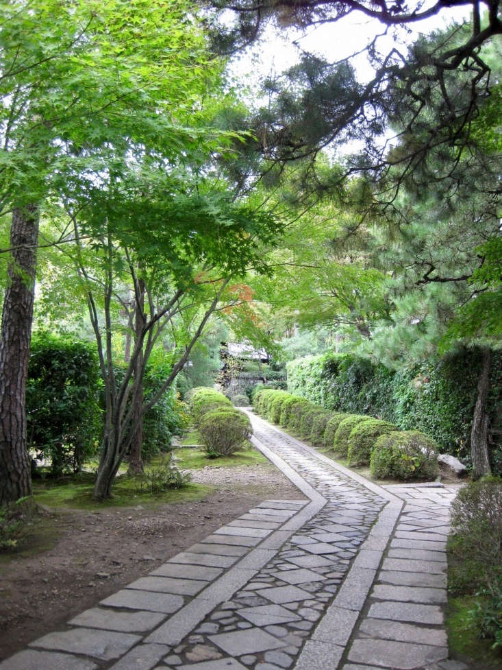 &#8\2\20;The road to Daisen-in&#8\2\2\1; leads to one of Japan&#8\2\17;s most iconic dry gardensin Kyoto. Photograph by Miss Vichar via Flickr.