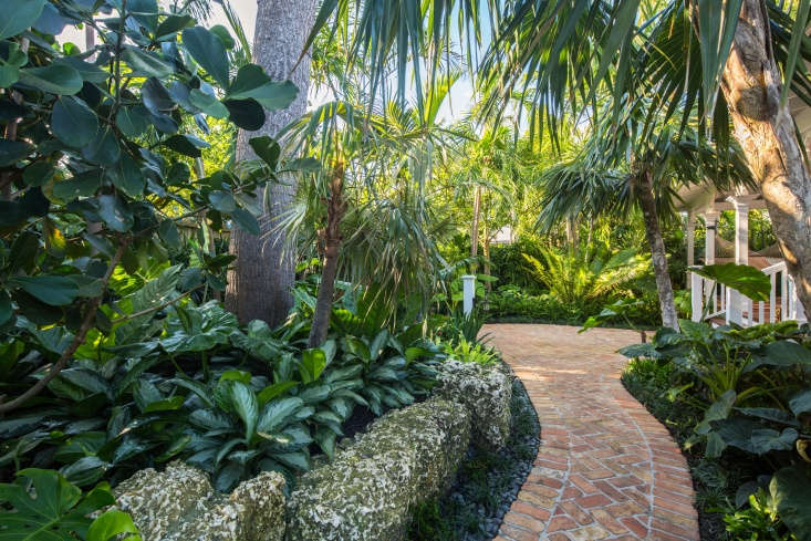 The oolite wall continues alongside a brick path that winds around the the side of the house. Behind the wall is planted a Florida silver palm (Coccothrinax argentata) andAglaonema&#8\2\16;Silver Bay&#8\2\17;, with silvery foliage that lights up a quiet, shady spot.