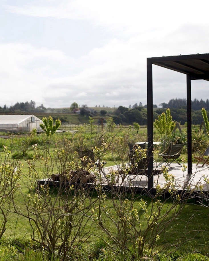 The Adjanis are working with architect Whitney Sanders of LA-based Sanders Architectsto construct a farmstead complex with root cellars, an office, a clubhouse for members, a wood shop, and a large kitchen to cook food harvested from the gardens.