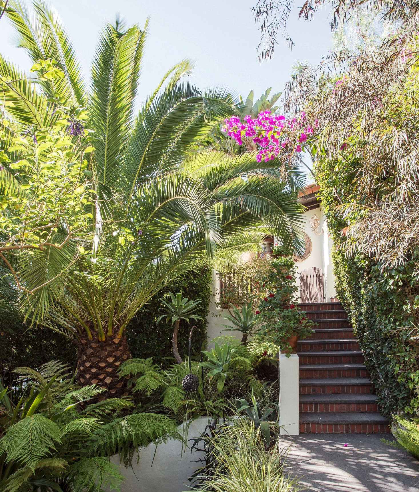 See more of this palm tree and the Los Angeles garden it graces in our book, Gardenista: The Definitive Guide to Stylish Outdoor Spaces. Photograph by Matthew Williams.