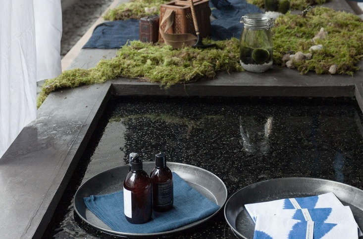Spotted: thewindow display at Philly shop Rikumo, inspired by Japanese water plants and &#8\2\20;Wonders of Water,&#8\2\2\1; the theme of this year&#8\2\17;sPhiladelphia Flower Show, opening next week.