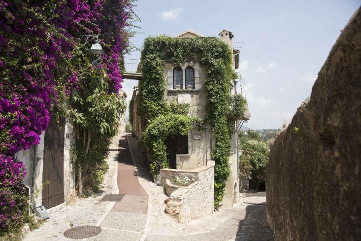 Fragrant jasmine vines cover a facade in Paul de Vence near Nice. Photograph byHelen Cathcart.