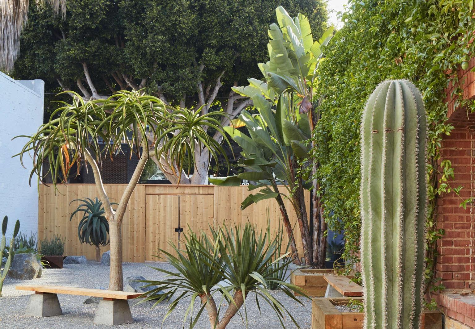 Landscape Architecture Design For A Desert Climate A Zen Garden In Santa Monica