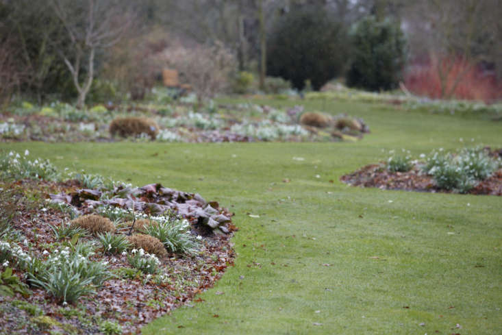 Bergenia edging. In the words of Beth Chatto: &#8