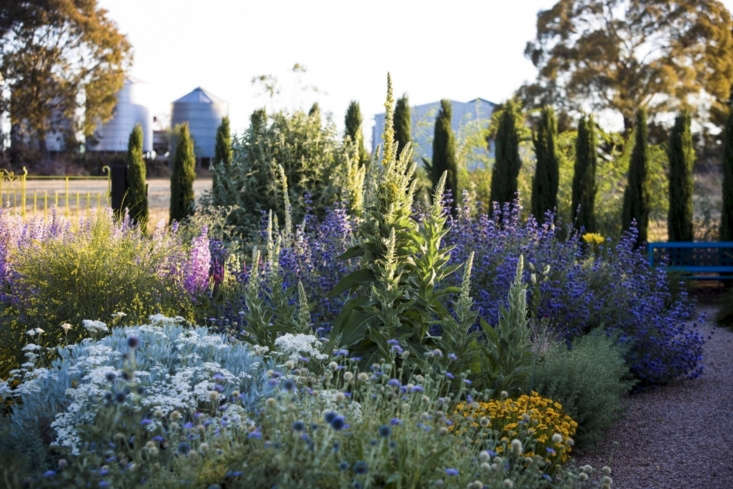 """See more at Can This Garden Be Saved: """"It Barely Rains; I Live in a Desert."""" Photograph by Claire Takacs."""