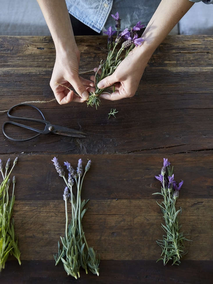 We formed bunches of fresh lavender before hanging to dry.