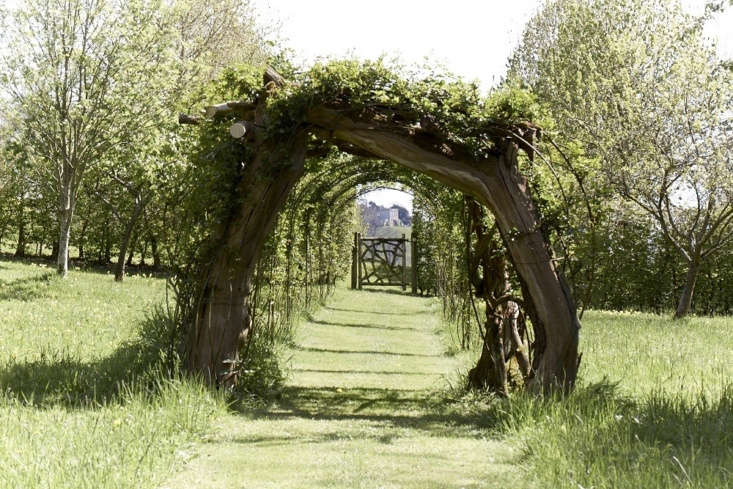 A mown grass path beneath an arch of apple and pear branches. See more at Garden Visit: A Modern Garden for a Gothic Estate in the Cotswolds. Photograph by Britt Willoughby Dyer.