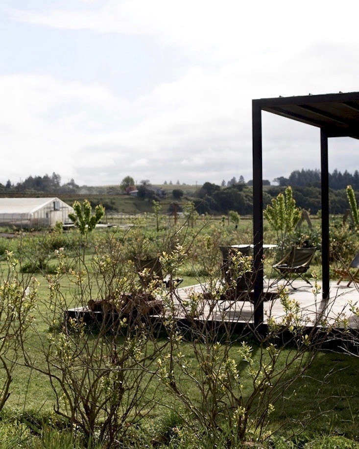 See more at Field of Dreams: A New Kind of Farm—for Members—at Noci Sonoma. Photography by Mimi Giboin.